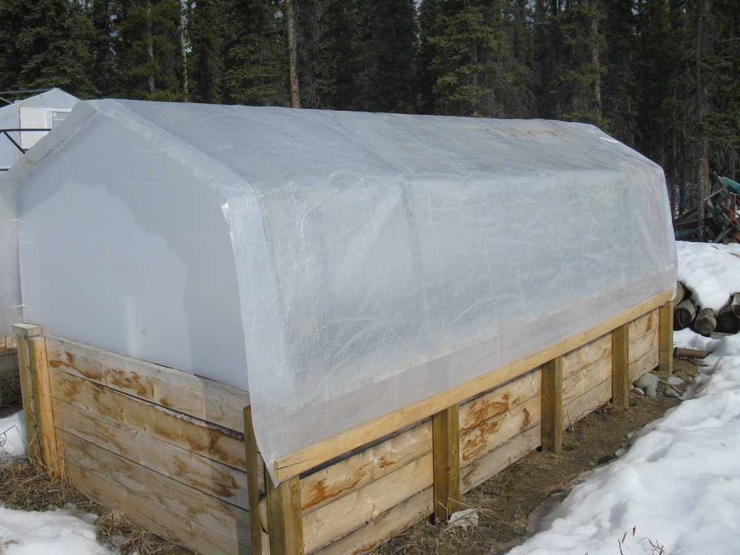 Cold Frame construction - yukongreenhouse